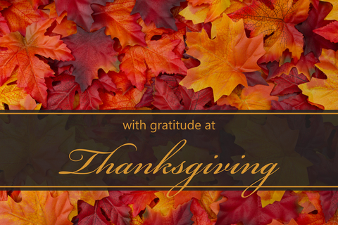Gratitude on this Thanksgiving