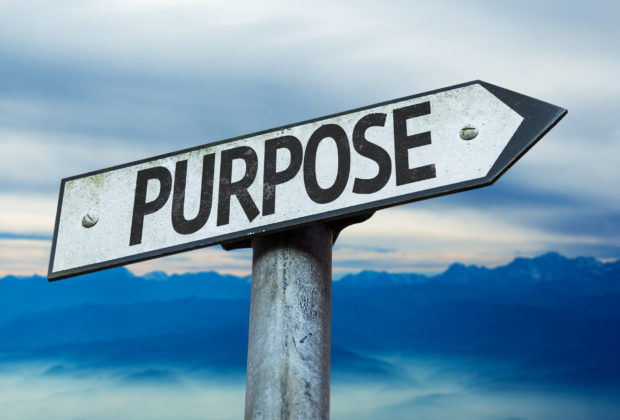 High-Purpose Cultures Small Businesses